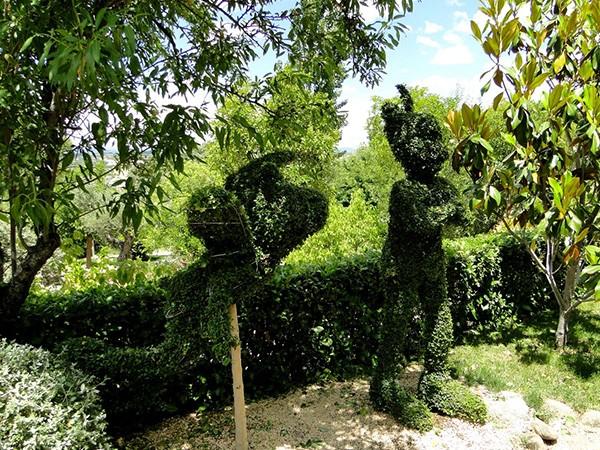 Fotos y videos el bosque encantado parque jard n bot nico for Jardin botanico el bosque encantado